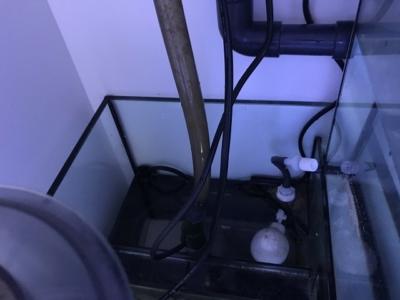 オーバーフロー水槽の循環ポンプ