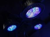 サンゴ用のLED照明
