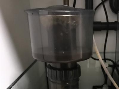 海道達磨のダストカップに溜まった汚れ