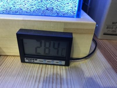 28.4度をさす水温計