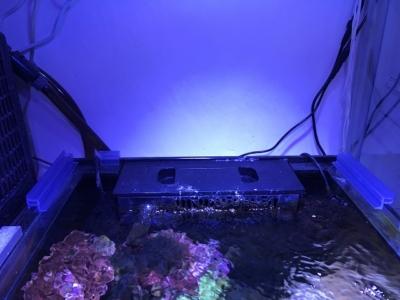 かさねらレールを取り付けた水槽