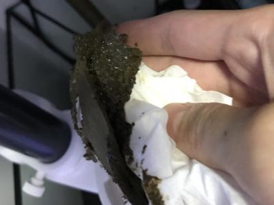 プロテインスキマー本体内部をティッシュで拭いてとれた大量の汚れ