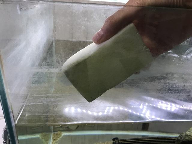 水垢汚れをメラミンスポンジで掃除しようとしている