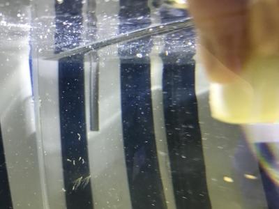 ガラス面についた水垢汚れの掃除
