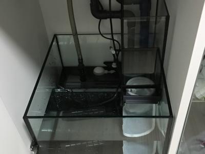 オーバーフロー水槽のサンプ