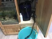 排水ホースとバケツ