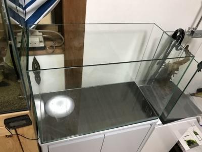 60cmハイタイプの水槽