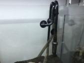 外部式フィルターの配管を水槽にセットした様子