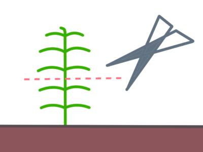 水草のカット図