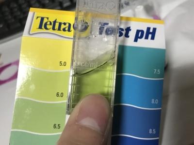 pH値6.0ぐらいを指す測定キット