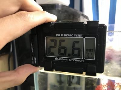 マルチ水温計Hを操作している様子