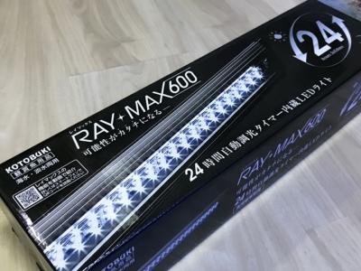 レイマックス600の製品パッケージ