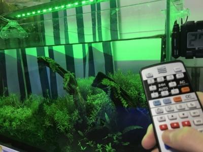 緑色LEDのみを点灯させたレイマックス