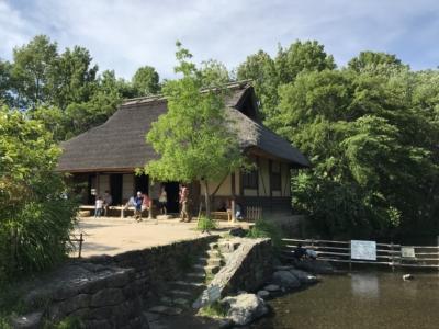 川沿いの古い建屋(河川環境楽園)