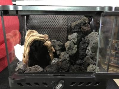 溶岩石と流木で組まれたレイアウト骨格