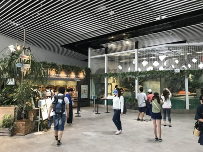 ニフレルの開放感ある展示スペース