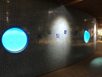 京都水族館のエントランス横ののぞき窓