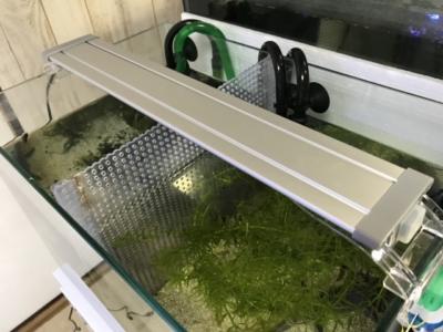 コトブキ フラットLED400を45cm水槽に設置した様子
