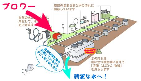 浄化槽のイメージ(環境省のサイトより改変)