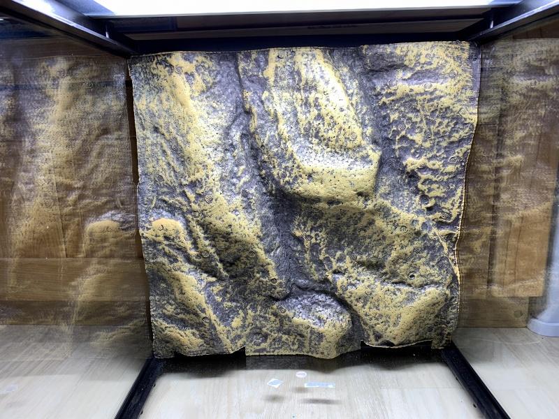 グラステラリウム 3030、背部デコレーションパネル