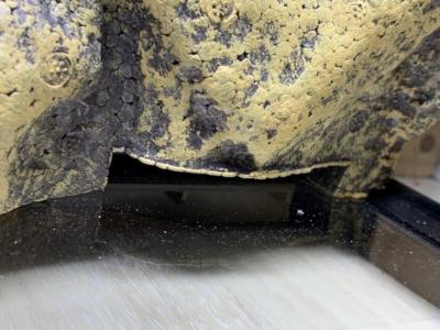 グラステラリウム 3030、背部デコレーションパネル(下側)