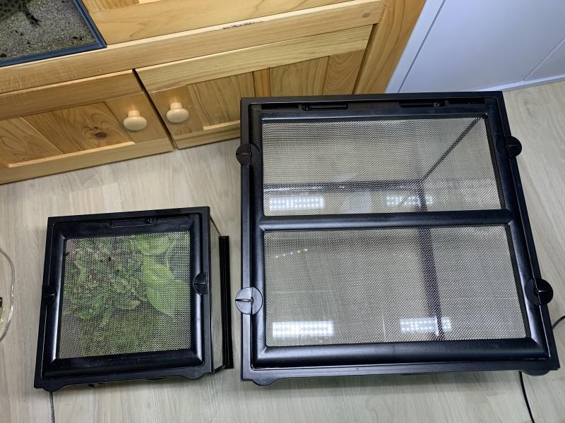 グラステラリウム 3030、ナノキューブと大きさ比較(上から)
