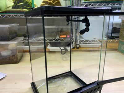 グラステラリウムにミスティングシステム:フォレスタ(Foresta)を取り付けた様子